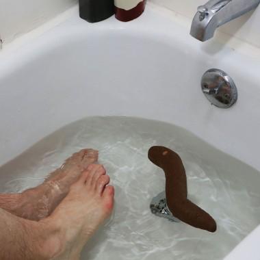 The Floater Prank Poop - 1