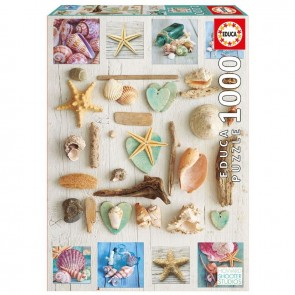 Seashells Collage 1000 Pieces Jigsaw Puzzle - 1